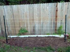 Front shot of finished trellis
